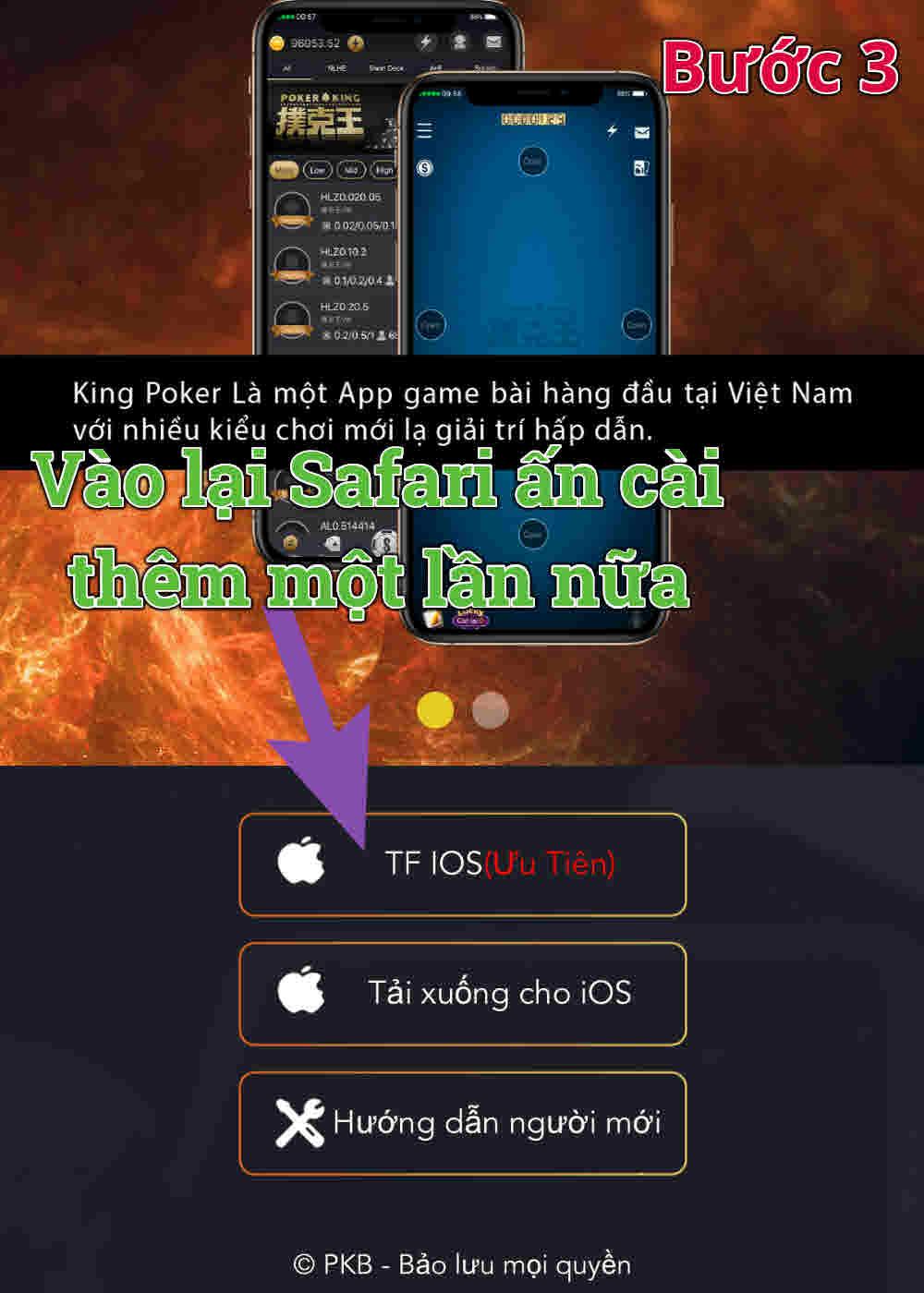 Poker King B3